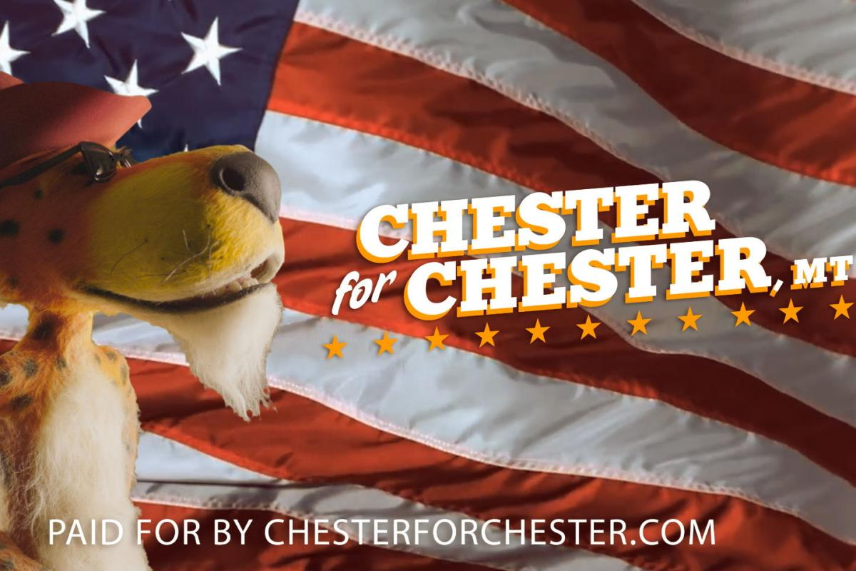 The Lowdown Chester Cheetah For Mayor A B Eyes Root Beer Cmo