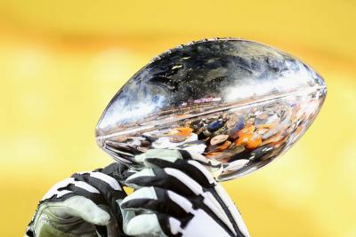 Super Bowl LI Complete Ad Chart