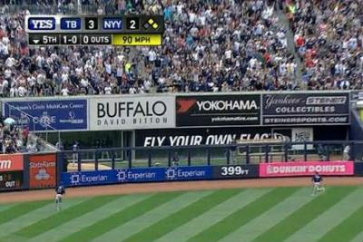 Experian had signage (bottom of the fence, above) in ball parks.