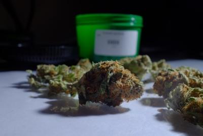 Marijuana at the Evergreen Apothecary in Denver