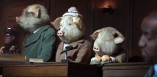 'The Three Little Pigs'
