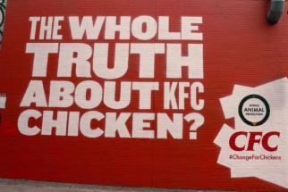 Animal Welfare Group Attacks KFC Campaign in U.K.