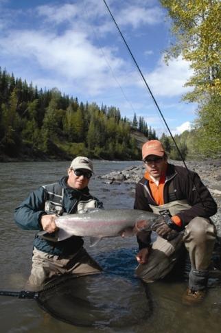 Steelhead catch in Babine, River, B.C.