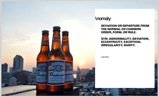 A screengrab of Anomaly's website this morning.