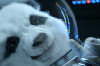 A panda astronaut from Kia's 'Space Babies' ad (embedded below)