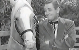 The much-loved Mister Ed and his (on-television) owner