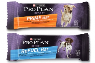 Energy Bars for Dogs?