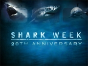 Shark Week celebrates its 20th anniversary with an immersive game called Sharkrunners.