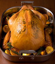 GOBBLE, GOBBLE: The bird is the word.