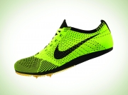 Nike Volt Shoe