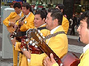 A band appeared on TV shows, on the streets, on buses and on subway trains singing the new Polla song.