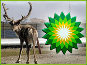 BP, whose recent ad campaigns portrayed the company as an environmental champion, is now wrestling with the petroleum mess and PR disaster spilled out onto Alaska's North Slope tundra. | ALSO: Comment on this column in the 'Your Opinion' box below.