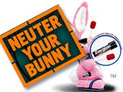 With an offbeat rabbit theme of its own, Panasonic's Oxyride batteries brand is taking on the Energizer bunny.