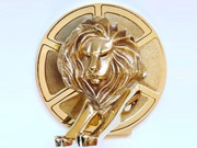 The Cannes Gold Film Lion award.