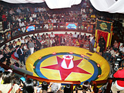 The venue always changes for the Dominican Republic's annual advertising-awards show. This year it was held at Coliseo Gallistico, an arena where twice-weekly cockfights take place.