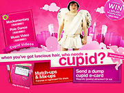 P&G's appears happy with its Dump Cupid push on YouTube.