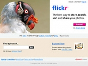 Flickr: A Web 2.0 poster child.