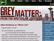 ABC's hit series 'Grey's Anatomy' also has a hit blog, 'Grey's Matter.' Staff writers pay close attention to fans' comments.