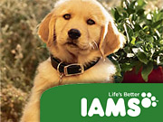 Iams claims four out of five vets recommend the brand to help dogs live healthier longer. But according to the NAD, P&G didn't back up the 'healthier longer' part.