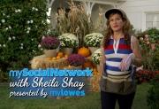 Ana Gasteyer as Sheila Shay from 'Suburgatory'