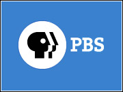 PBS plans to run ads on the section fronts of its website, but has banned many types of companies from the space