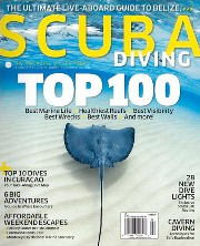 In many cases, niche magazines like Scuba Diver have found ways to tap their readers' obsession with their subject matter.