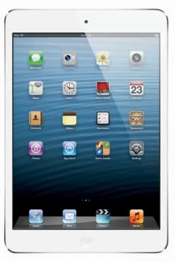 Multitasking on the iPad Mini.
