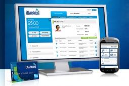 Bluebird from Walmart and American Express