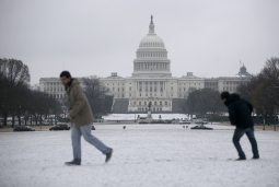 It sure didn't feel like spring last week in Washington, D.C.