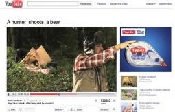 Hunter shoots a bear