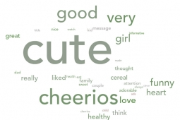 Word cloud from survey comments.