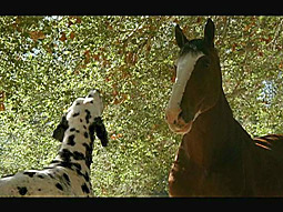 In the Budweiser brand's lone Super Bowl spot, a Clydesdale cut from the iconic team tries to work his way back under the watchful eye of a Dalmatian.