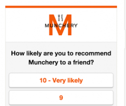 Delighted survey tool