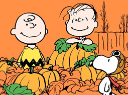 It's all about Linus.