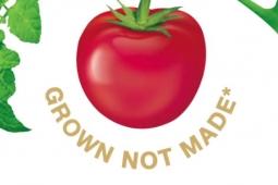 Heinz's tomato school