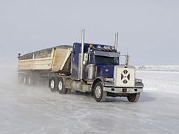 Despite a great year, AETN, home of the History Channel's 'Ice Road Truckers,' must prepare for a rough road in 2009.