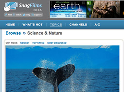 SnagFilms is curated in a way that richly rewards anybody who's remotely curious about the world.