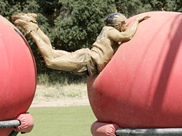 ABC's 'Wipeout' was the second-highest-rated show of Tuesday night.