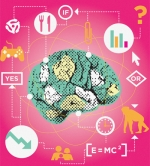 Inside the Brain of a Boomer: Cash-Rich Demo Does Poorly With Visual Complexity