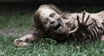'Walking Dead' Will Invade the World