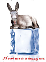 PEARL IZUMI: Pocket Hercules adopted a grinning donkey to explain the sports-apparel maker's technological advantages in a non-wonkish way.