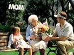 Who Had the Better Media Plan? 1-800-Flowers vs. Teleflora