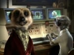 How Did a Meerkat Bowl Over Brits? It's Simples