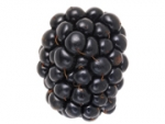 Faced With BlackBerry Jam, Industry Keeps Stiff Upper Lip