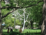 Roxy Paine's tree installation in New York