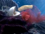 Ariston 'Underwater World'