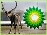 BP Should Have Concentrated on Being a Better Oil Company