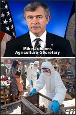 U.S. Agriculture Secretary Mike Johanns (top) will appear in TV spots warning the public about 'a lot of misinformation' about bird flu. Below is a scene from the upcoming ABC movie 'Fatal Contact: Bird Flu in America.'