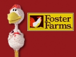 Foster's Imposters
