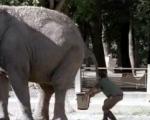 MTV 'Zoo'